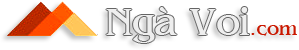 Ngà Voi – Trang Sức Ngà Voi – Tượng Ngà Voi – Thế Giới Ngà Voi